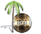 Bush Media Logo